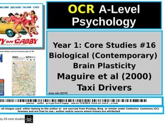 OCR A-Level Psychology: Core Studies #16 Biological (Contemporary) Brain Plasticity, Maguire et al