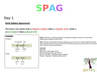 SPAG Powerpoint for starters/short teaching sessions (5)