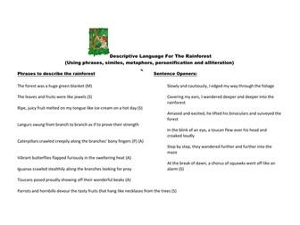 A mat to describe the rainforest