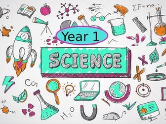 Year 1 Science curriculum coverage breakdown.