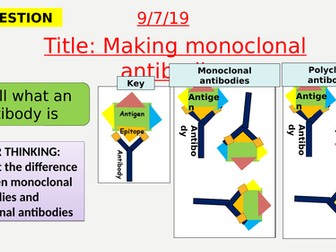 AQA new specification-Making monoclonal antibodies-B6.5