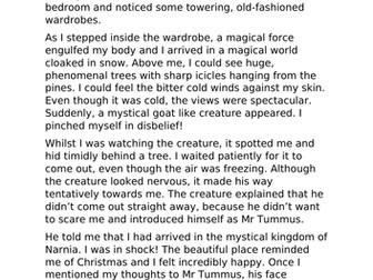 Narnia Diary Extract