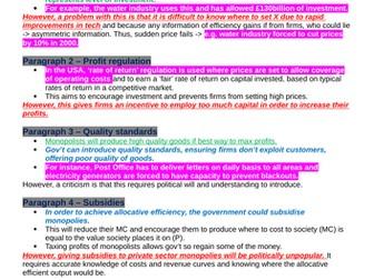 Theme 3 Edexcel Economics Essay Plans: Government Intervention