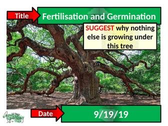 Fertilisation and Germination - Activate