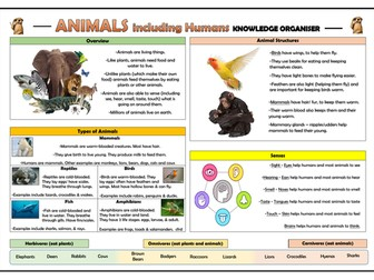 Year 1 Animals including Humans Knowledge Organiser!