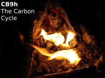 Edexcel CB9h The Carbon Cycle