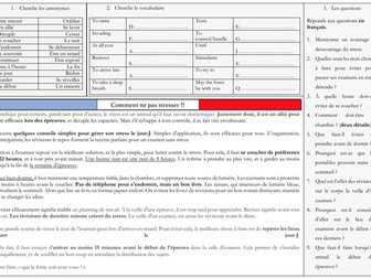 French A Level Education - stress des examens (reading, exam practice questions)