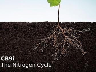 Edexcel CB9i The Nitrogen Cycle