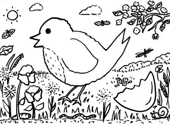 Spring Robin Colouring Sheet