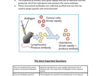 Monoclonal Antibodies Worksheet & Cheatsheet