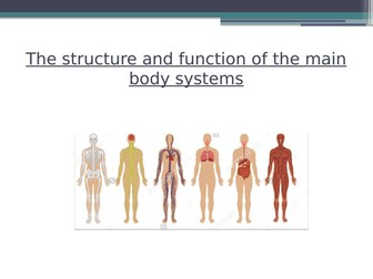 Body Systems - Physical Education