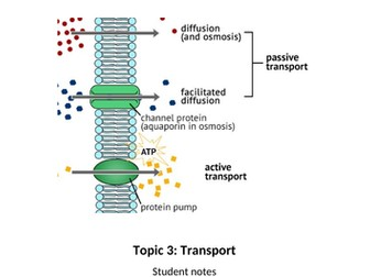 Transport Across Membranes for Applied Human Biology BTEC Level 3