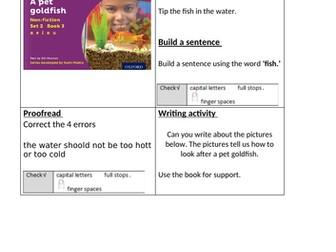 RWInc Purple story books - activity sheets
