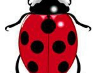 ladybird spots - number bonds to 10