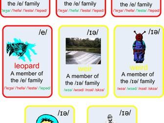 Happy families ELT cards - EI families