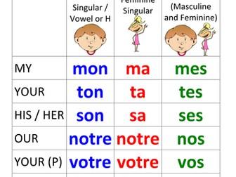French Possessive Adjectives / Pronouns