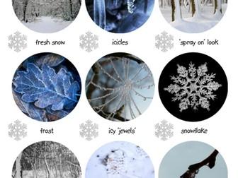 Winter Spotter Sheet