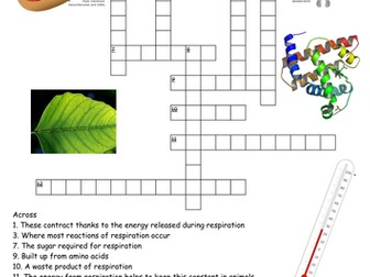 Aerobic respiration by dythamlinds teaching resources tes ccuart Choice Image