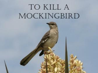 To Kill a Mockingbird Background Presentation