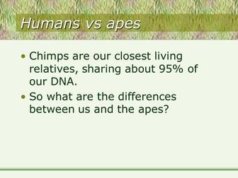 Human evolution resources