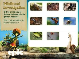 Minibeasts and habitats EPIC - KS1 & KS2