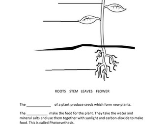 Best label parts of a flower worksheet ks1 image collection parts ccuart Choice Image