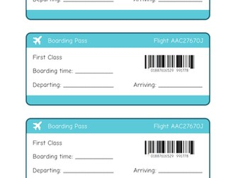 Plane Travel Tickets