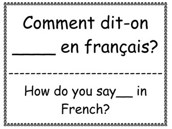 Basic Classroom French Phrase Posters