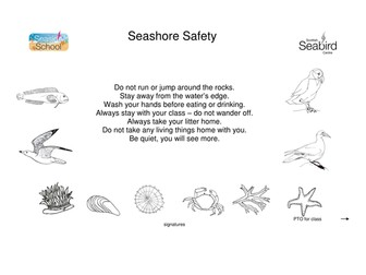 Seashore Safety