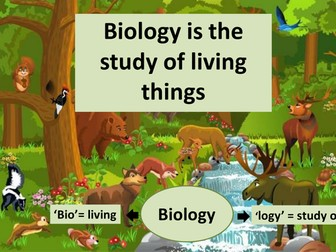 Living Things and The Cell