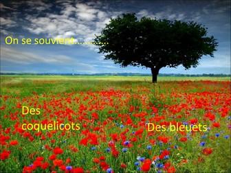 Remembrance Day / L'Armistice
