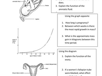 Questions on pregnancy, reproduction