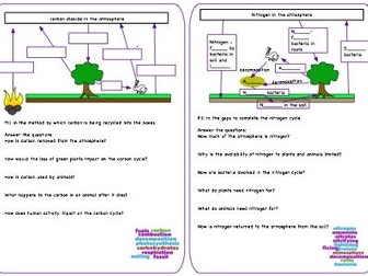 Carbon and Nitrogen cycle revision sheet
