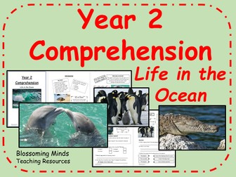 Year 2 Reading Comprehension - The Ocean (habitats) - Science
