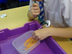 Evolution. KS2 practical activity and resources