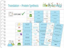 Translation / Protein Synthesis - Loop Game (KS5)