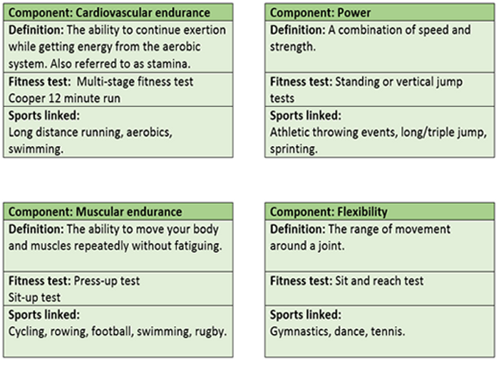 GCSE PE OCR 9-1 Components of fitness revision flash cards by ...