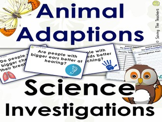 Animal Adaptions: Sports Investigation