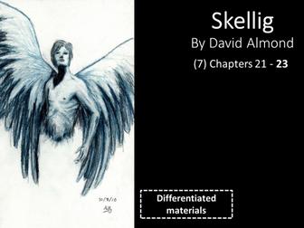 KS3: Skellig (7) Chapters 21 to 23