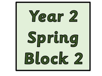 Year 2 - Spring Block 2 - Statistics (Block 6)