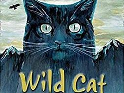 Wild Cat (Collins Big Cat Readers)