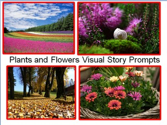 Plants and Flowers Visual Story Prompts - Creative Writing Prompts + 31 Flashcard Teaching Ideas