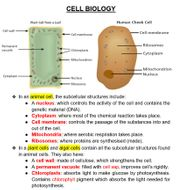 CELL-BIOLOGY.docx
