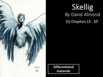 KS3: Skellig (5) Chapters 15 to 17