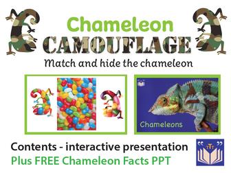 Chameleon Camouflage - interactive
