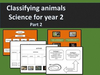 Classifying animals part 2 - year 2