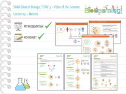 SNAB Biology Topic 3 -  Lesson 04 (Meiosis) - WS and PPT