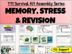 Memory, Revision and  Stress Y11 Survival Kit