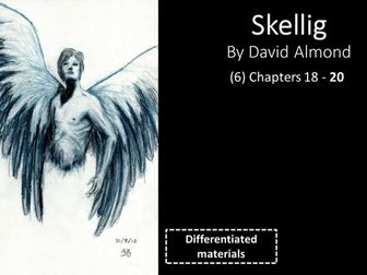 KS3: Skellig (6) Chapters 18 to 20