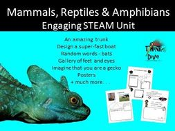 Mammals, Reptiles and Amphibians  - STEAM - Biomimicry for Young Children - UK